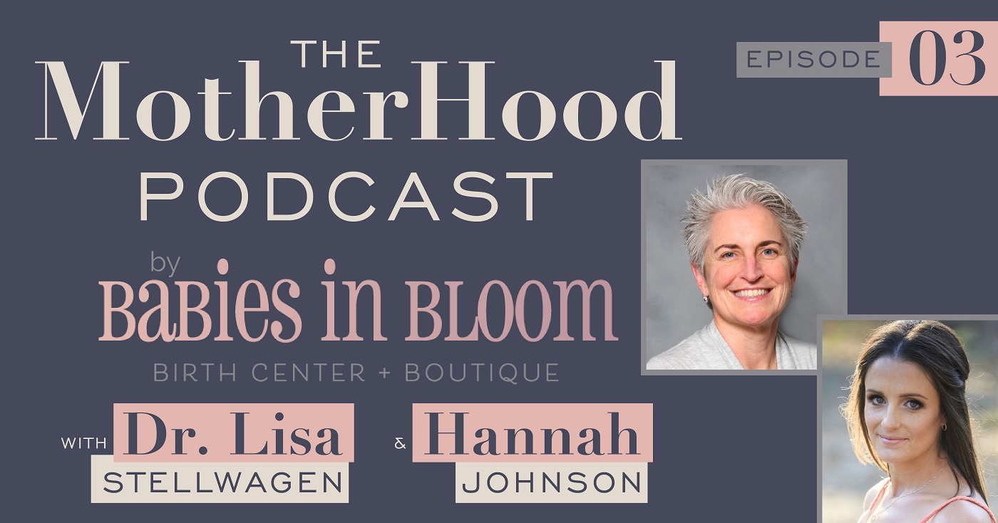 The MotherHood Podcast Ep 3 Dr. Lisa Stellwagen and Hannah Johnson Feature